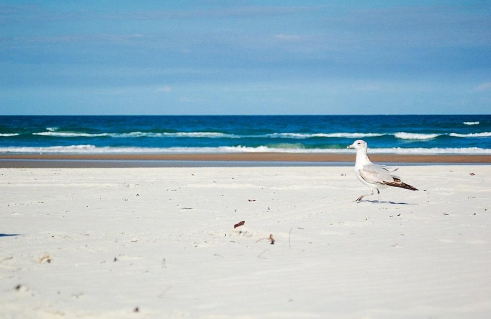 10 plages incroyablement belles que 04s