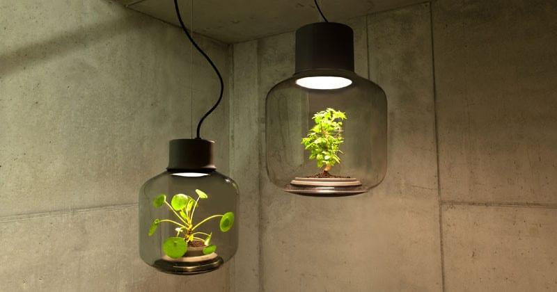 Ces lampes ont ete concues 01s