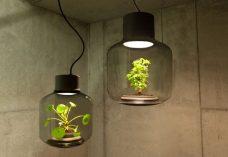 Ces lampes ont ete concues f