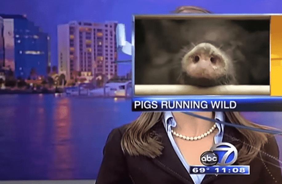 Des photos ridicules et hilarantes 44