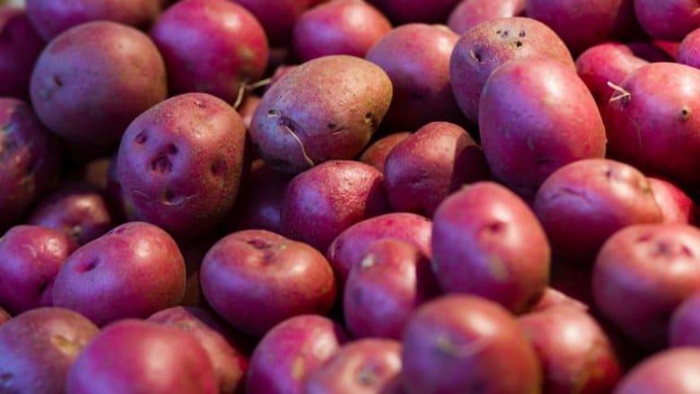 8 legumes que vous devriez 10