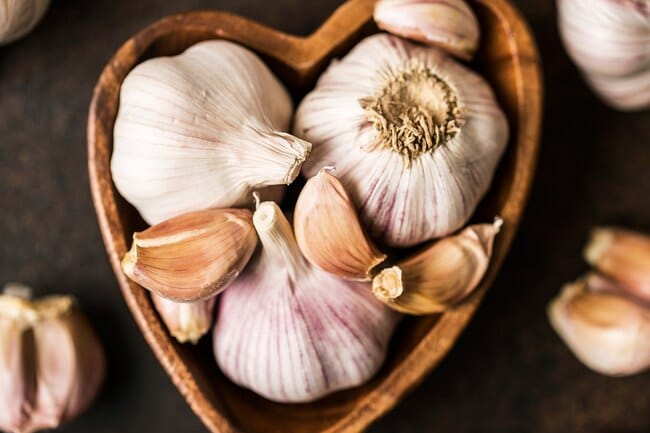 Garlic v2