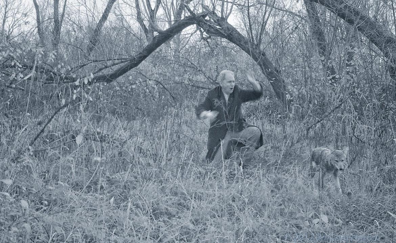 Des cameras de trail capturent 05